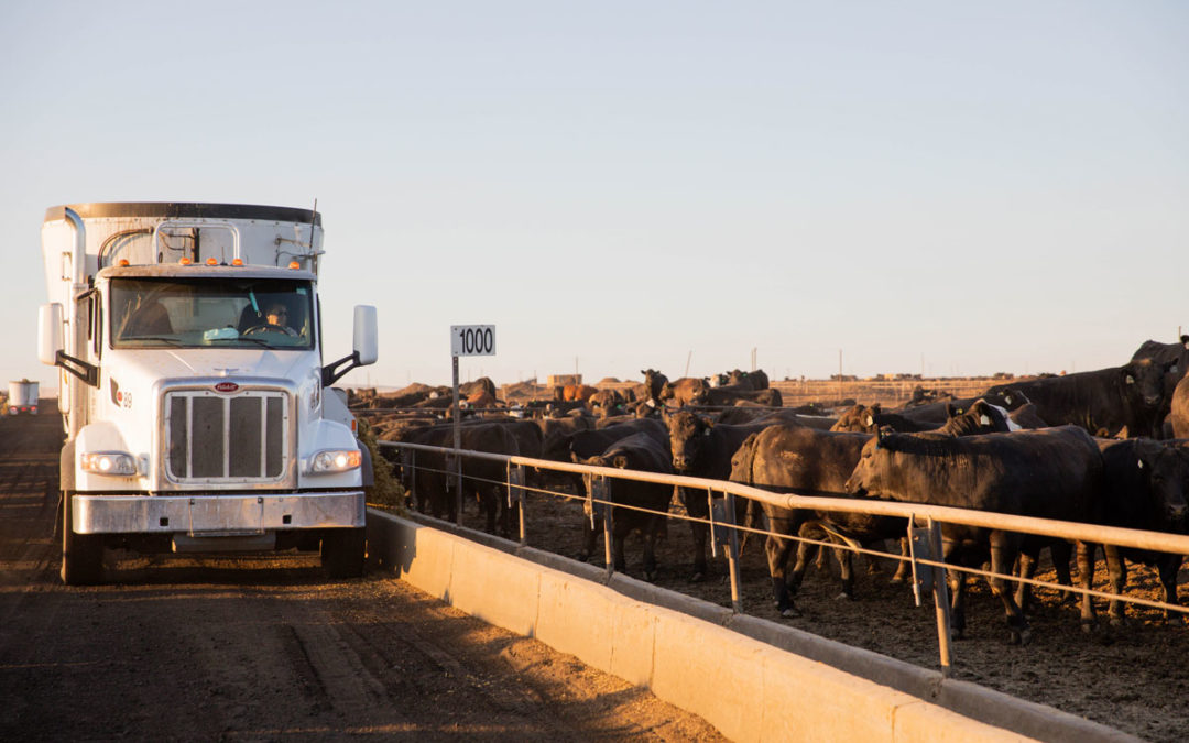 Registration now open for 2021 Feeding Quality Forum
