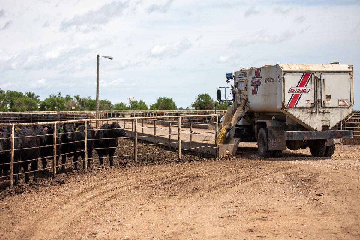 feed truck at yard