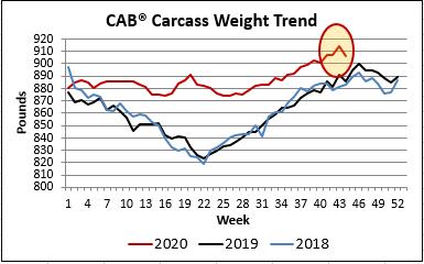 CAB carcass weight trend