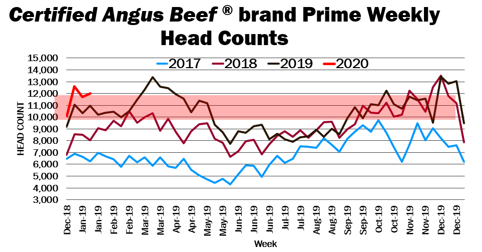 CAB brand Prime head counts