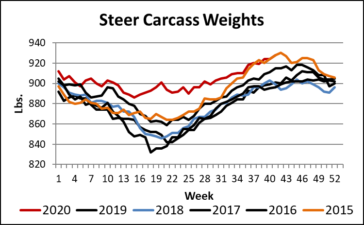 steer carcass weights