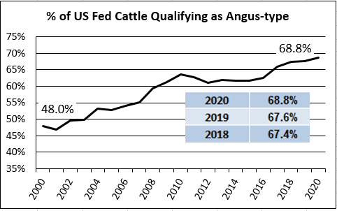 Angus qualifying fed cattle graph