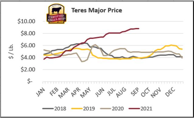Teres Major Price